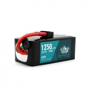 Acehe Ace-X 1250mah 6S 22.2v 100-200c Lipo - XT60